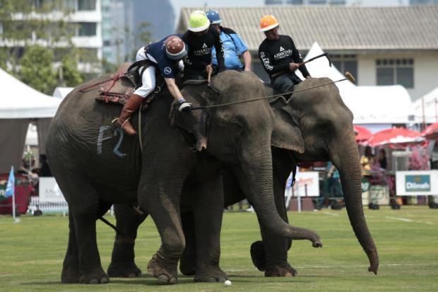 Players compete at the King's Cup Elephant Polo tournament yesterday. Patipat Janthong