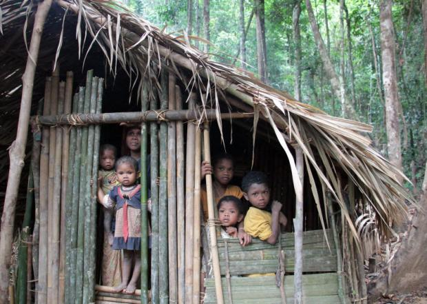 new outlook: Maniq children look out from their hut upon seeing strangers. photos: Tawatchai Kemgumnerd