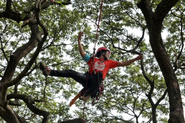 Hang tough: To protect urban trees, the Thailand Urban Tree Network, a local civic group, held the 'Thailand Tree Climbing Championship (TTCC) 2018' at Lumpini Park to raise awareness about tree conservation and provide professional training by tree surgeons — known as