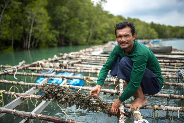 Baan Bang La residents earn their income from aquaculture farms, coastal fishing, and small-scale rubber farms. Fish, crabs, prawns and mussels are abundant in this area. They mostly feed local communities and nearby provinces. Photos by the United Nations Development Programme (UNDP)