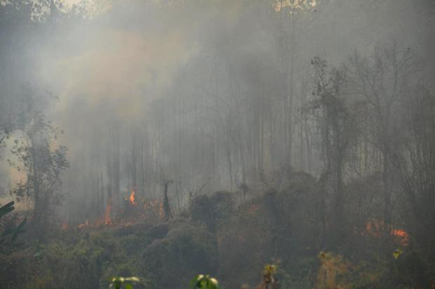 WHERE THERE'S SMOKE: A bushfire yesterday rips through mountains in Chiang Mai's Chiang Dao district. Bushfires and open-farm burning are being blamed for spewing out toxic haze.