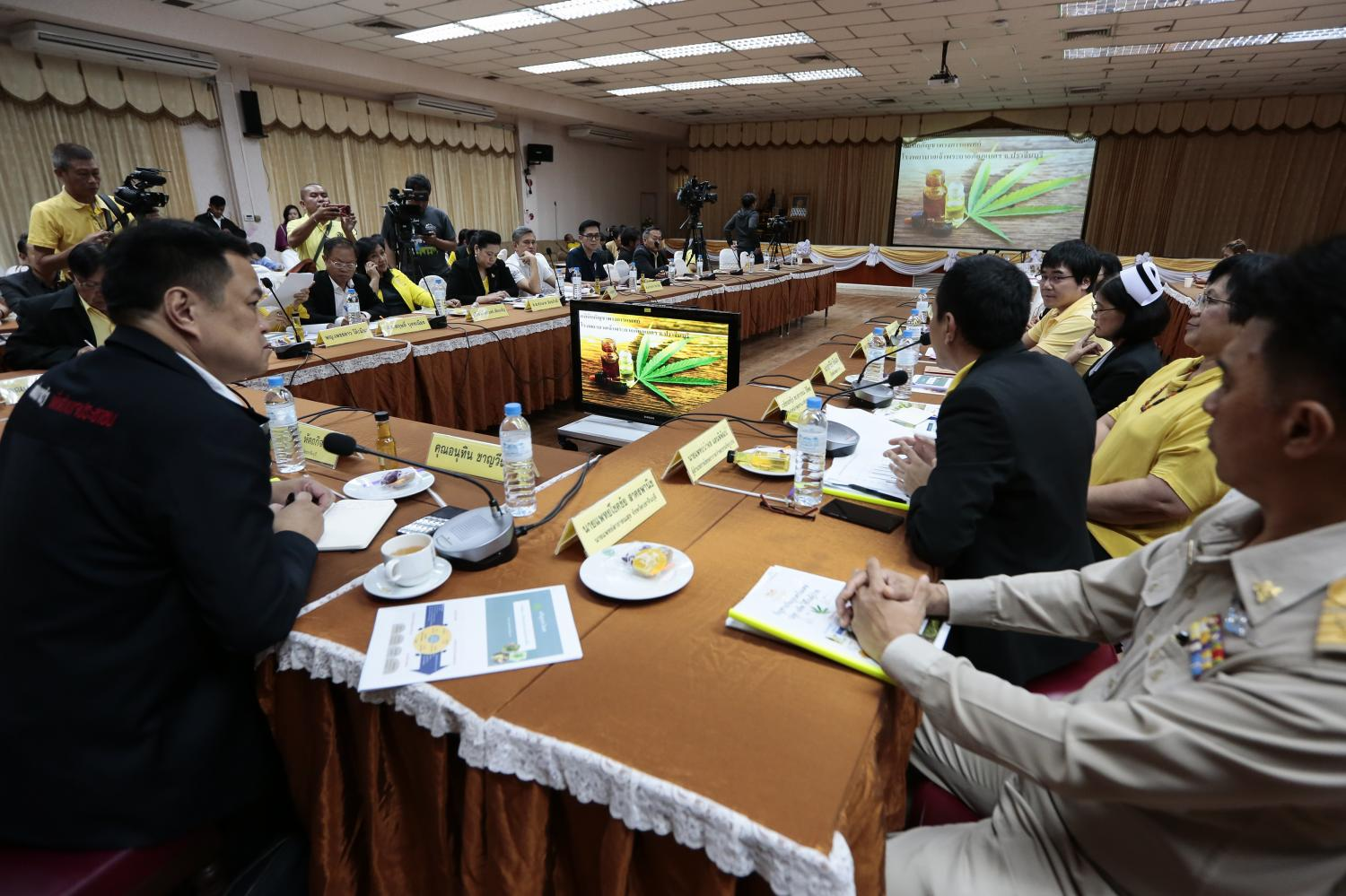 Anutin Charnvirakul, left, leader of the Bhumjaithai Party which is pushing for legal marijuana planting, attends a meeting on its medical uses at Chaopraya Abhaiphubejhr Hospital in Prachin Buri. On Friday, the hospital showed visitors its cannabis plantation and techniques to extract marijuana oil. Patipat Janthong