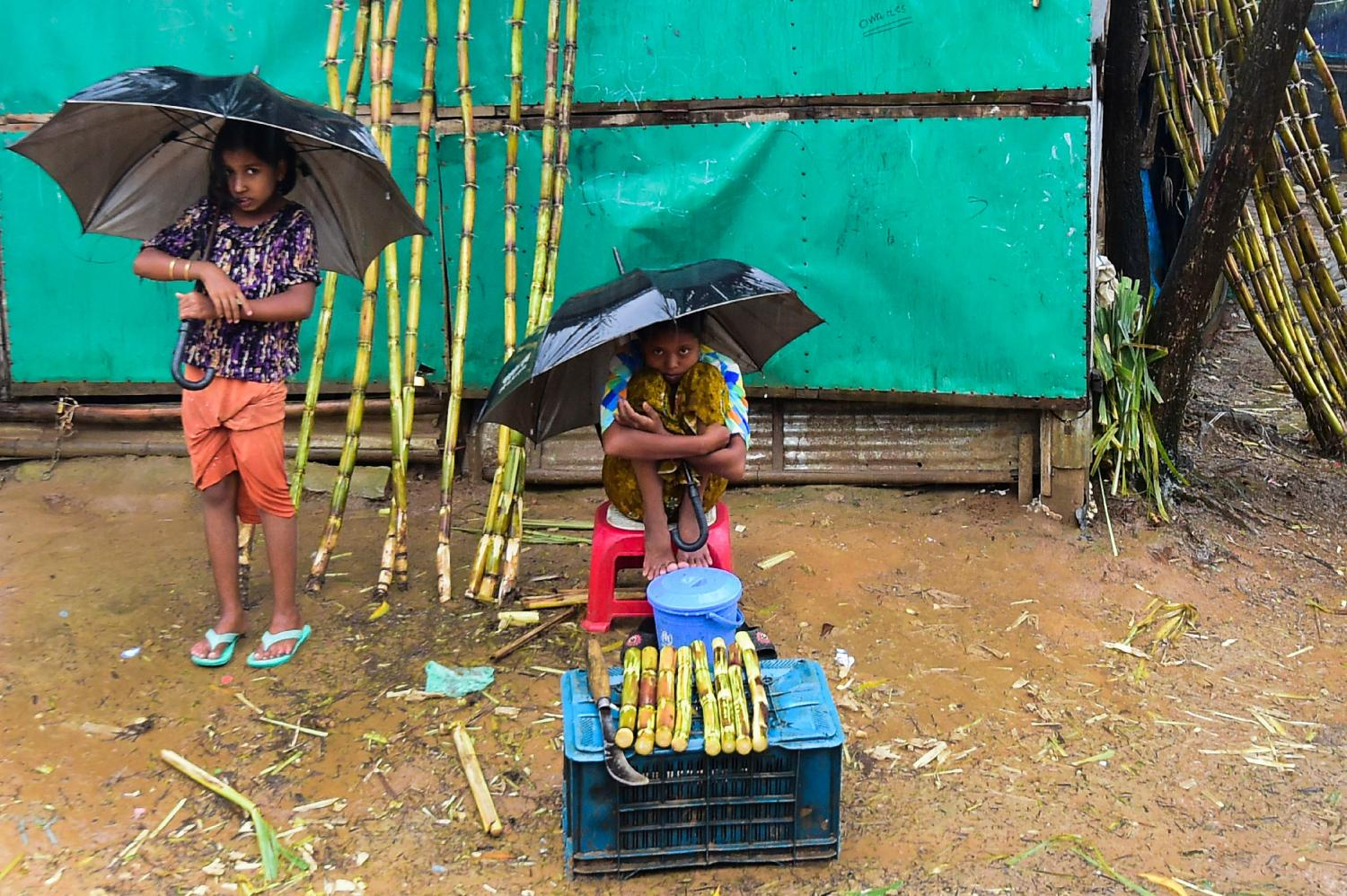 Rohingya refugee children sell sugar cane during a monsoon rainfall at Kutupalong refugee camp in Ukhia. (Photo courtesy of AFP)