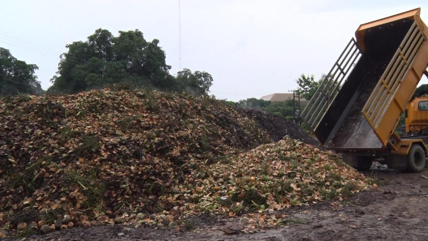 The Chiang Mai municipality collects coconut shells to produce organic fertiliser.