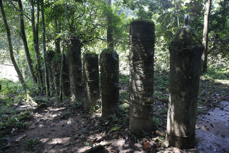 Concrete pillars in Khao Yai National Park are to be reinforced to prevent wild elephants venturing near dangerous areas.Wichan Charoenkiatpakul