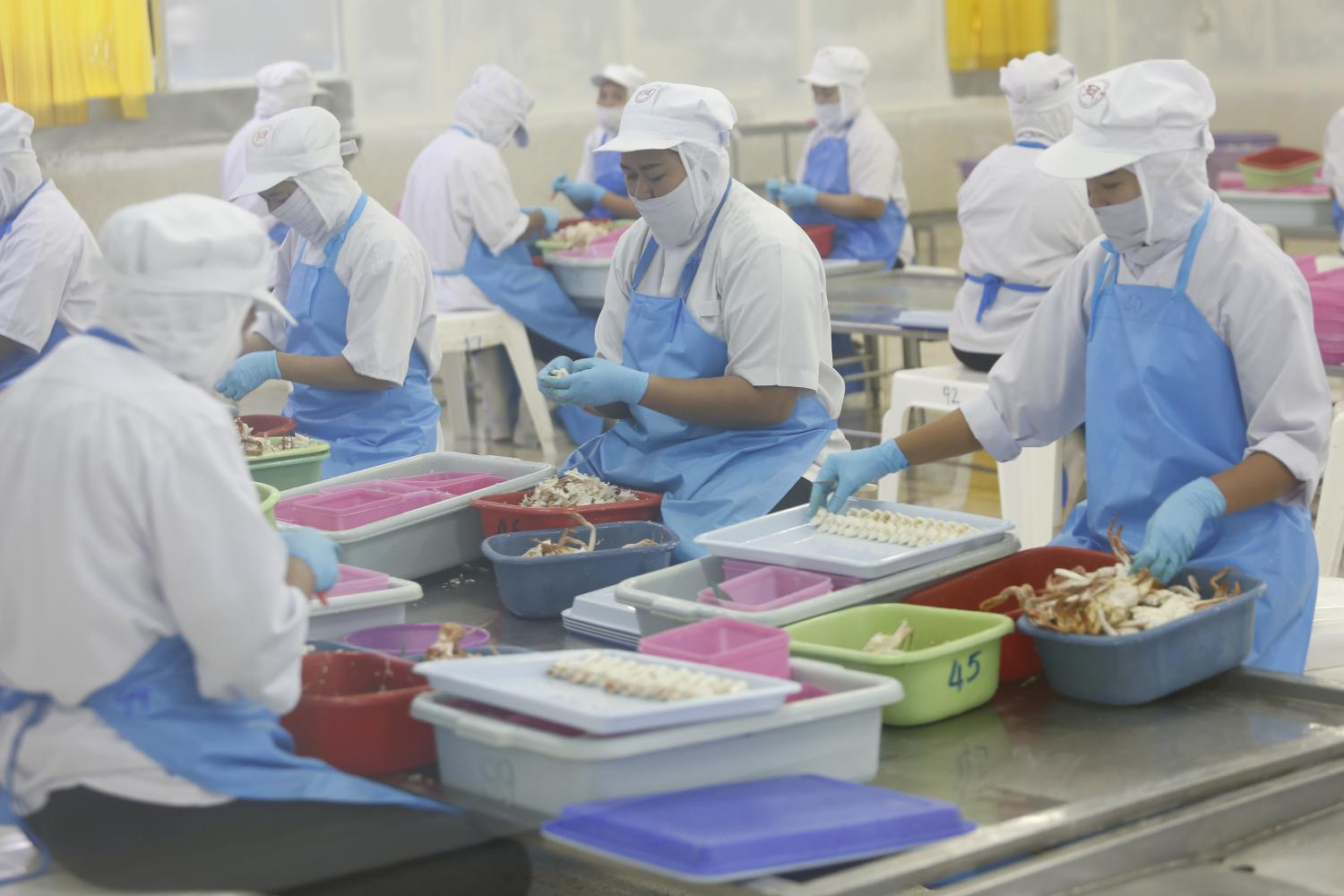 Food factories rely heavily on intensive labour, so the recent wage hike has led many companies to postpone expansion and recruitment. (Photo by Pattarapong Chatpattarasill)