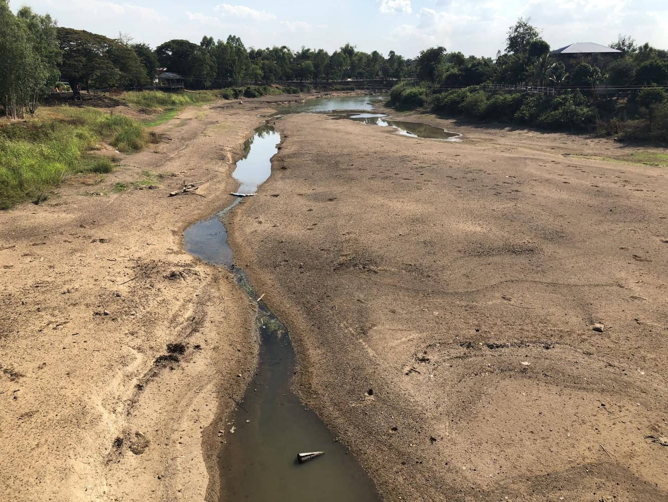 Parched offerings: A dried-up riverbed is visible at a section of the Yom River in Phichit's Sam Ngam district as drought takes its toll on locals who do not have enough water for farming.