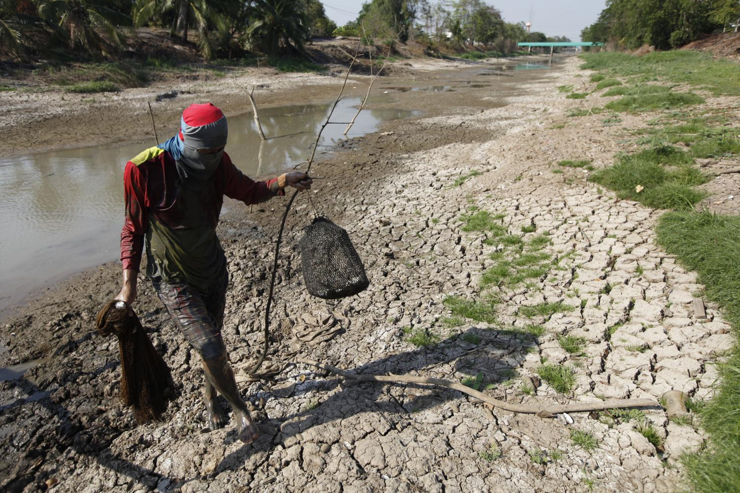 A man carries a fish he caught in a parched canal in Pathum Thani. Drought has already hit farmers in Thanyaburi, Klong Luang and Nong Sua districts of the province just north of Bangkok.(Photo by Wichan Charoenkiatpakul)