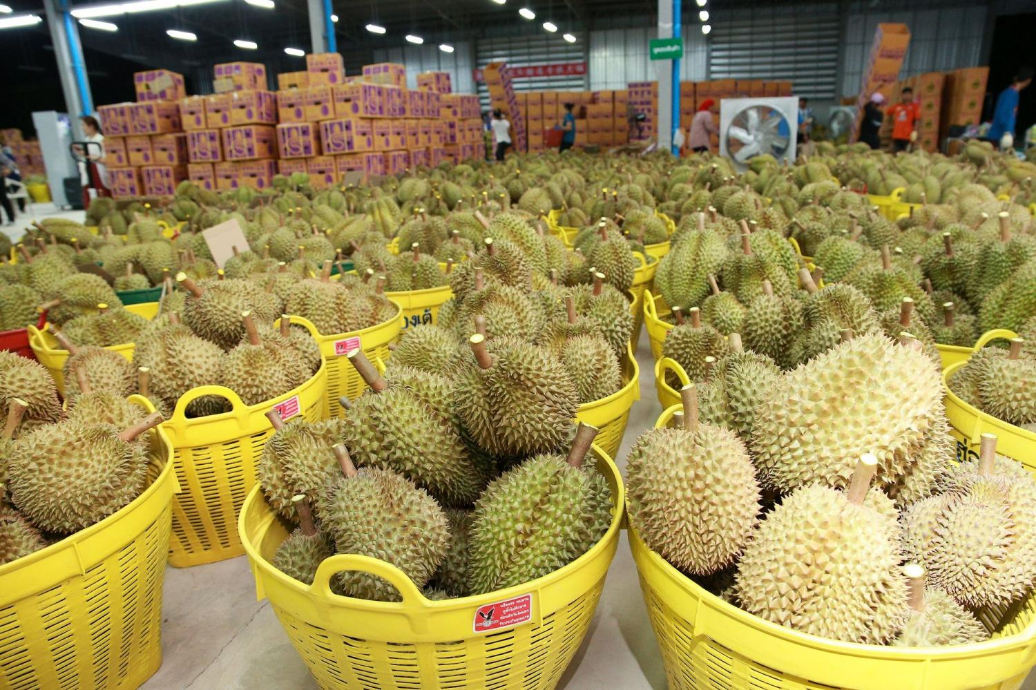 Fresh durian and seasonal fruit from Thailand are on offer during China's biggest online shopping event, Tmall 6.18 Mid-Year Shopping Festival.
