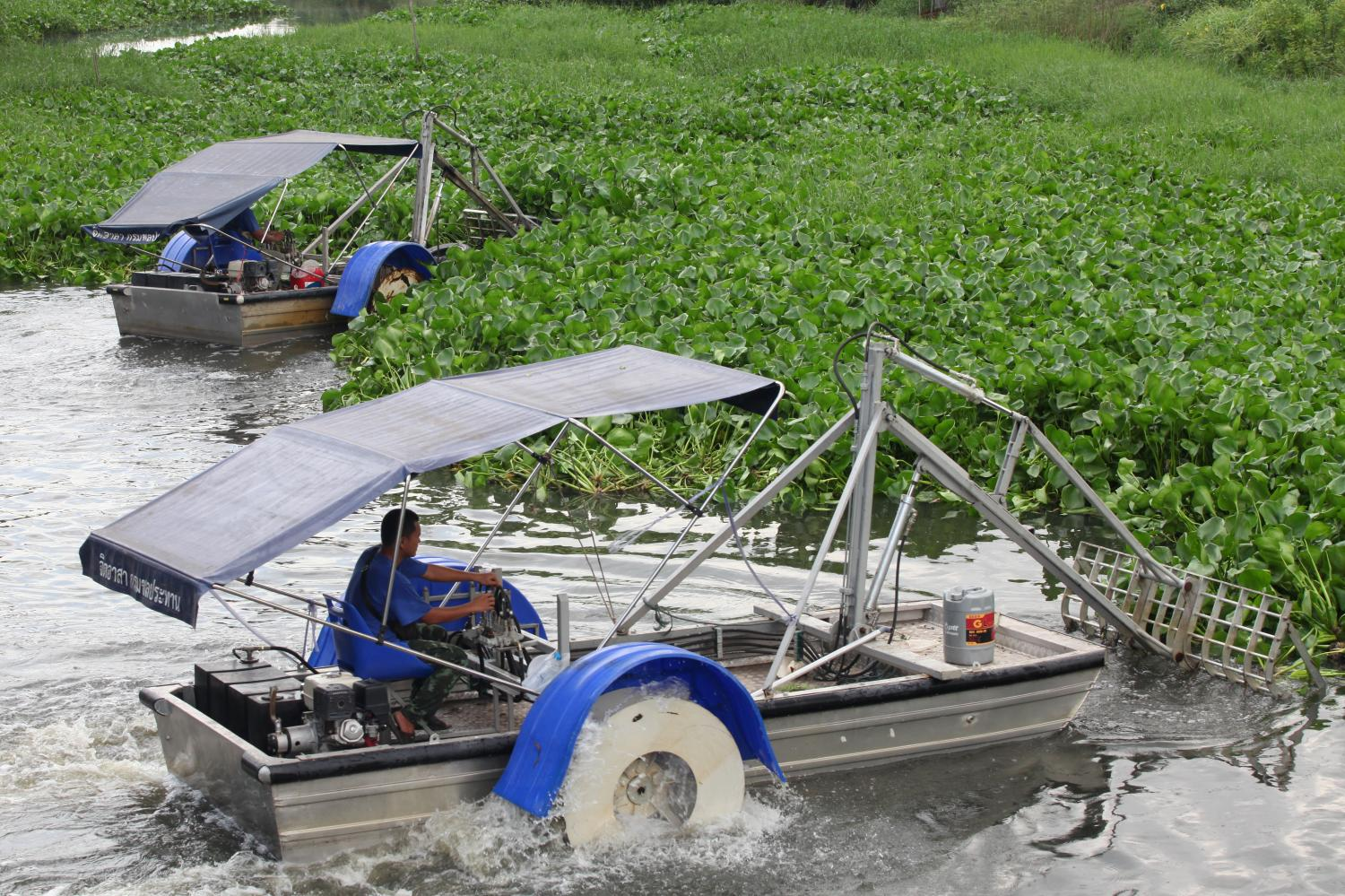 Workers harvest water hyacinth with a converted boat in Khlong Luang district of Pathum Thani. More such boats will be deployed along the area's waterways to control the aquatic weed.Arnun Chonmahatrakool