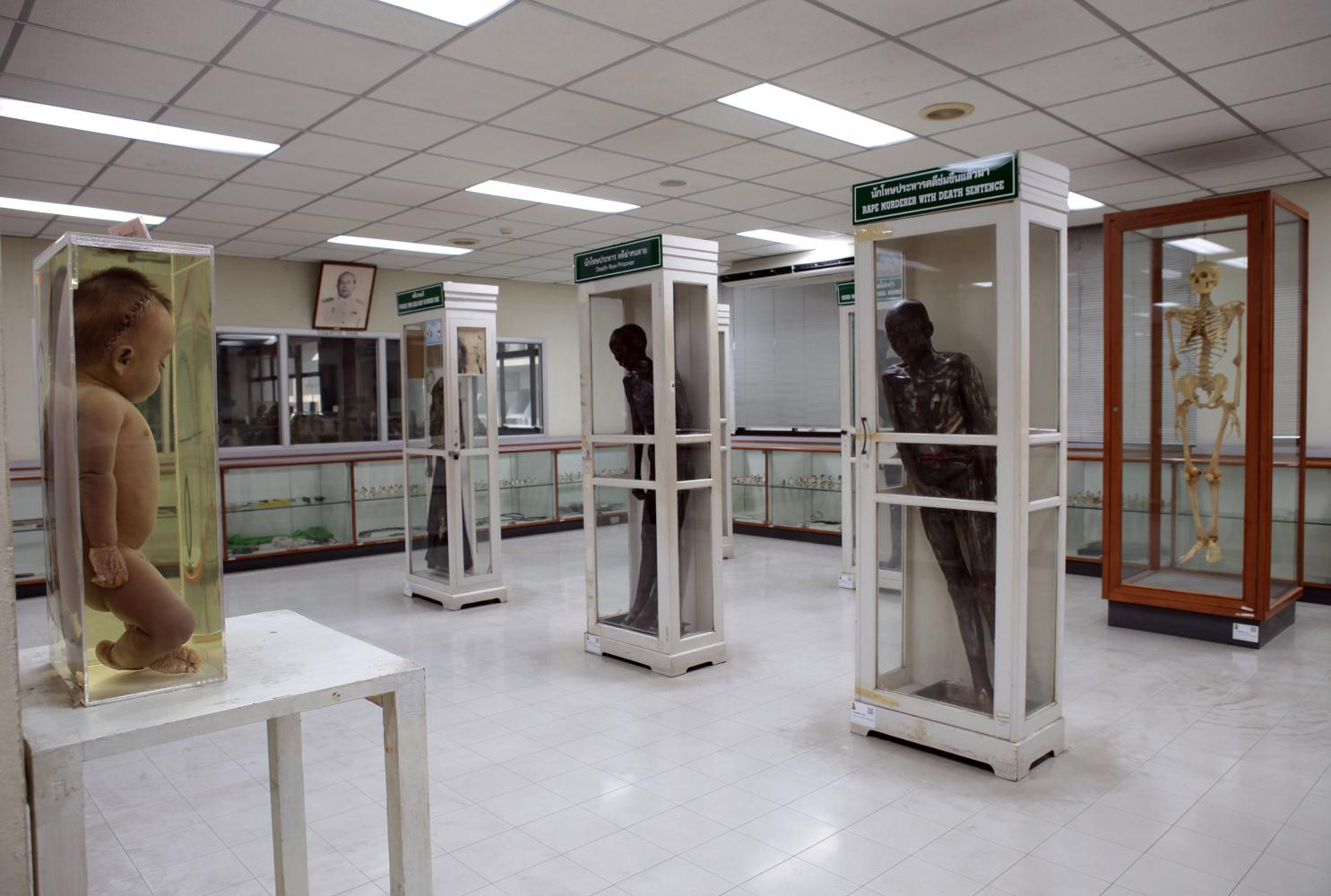 left Si Quey's preserved cadaver, centre, is seen on display at the Medical Museum of Siriraj Hospital on June 7 last year. It was removed from the museum last year. Tawatchai Kemgumnerd