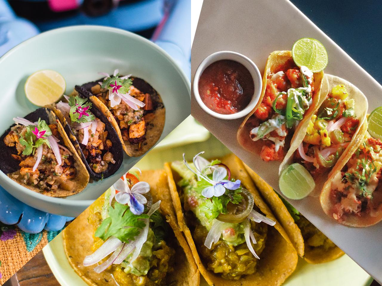Celebrate Mexican culture with taco tasting