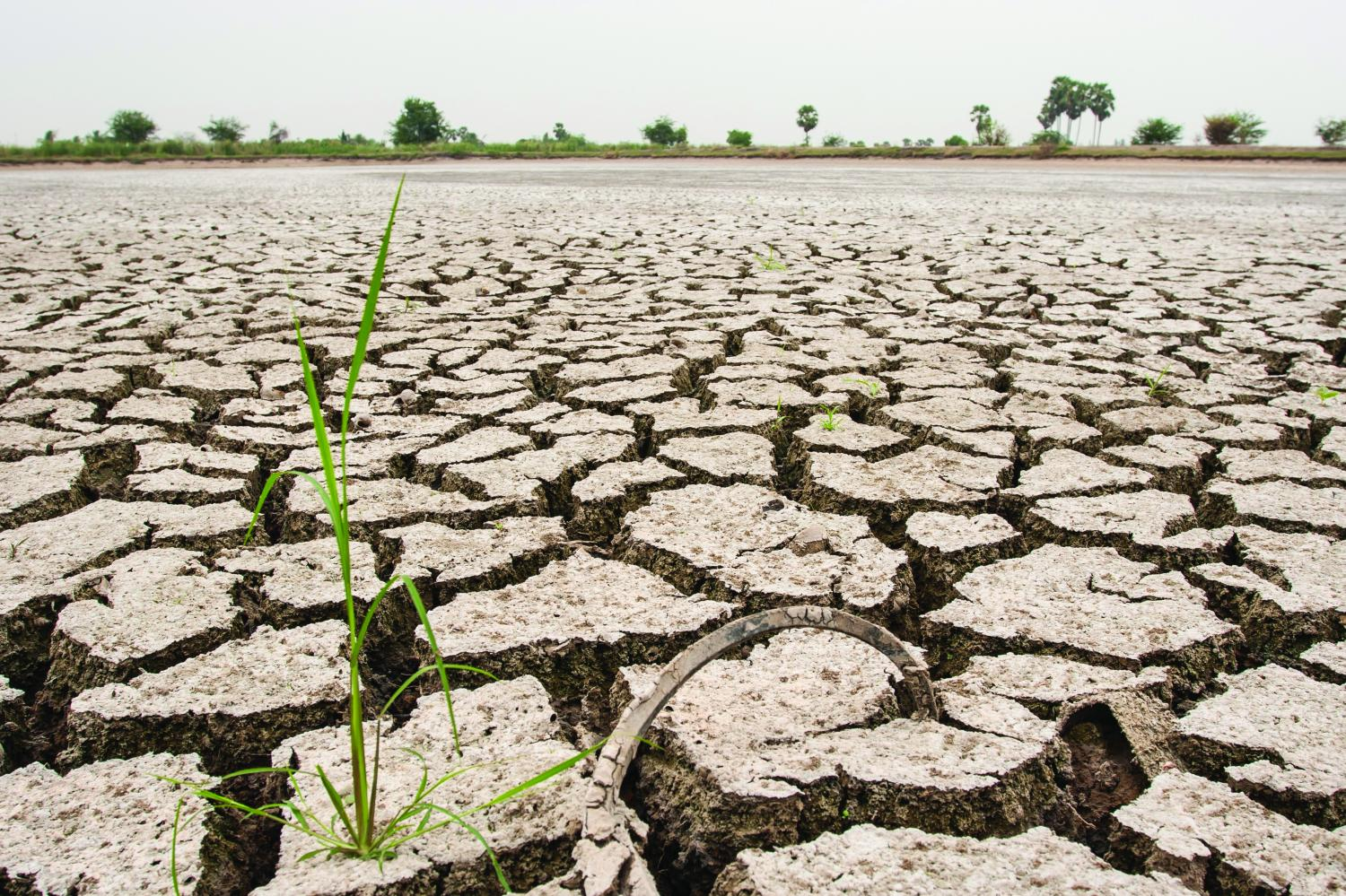 A file photo shows parched land as farmers wait for rain. Government help for them often comes too little, too late.(Bangkok Post photo)
