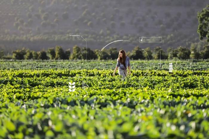 NSTDA touts smart system of farming