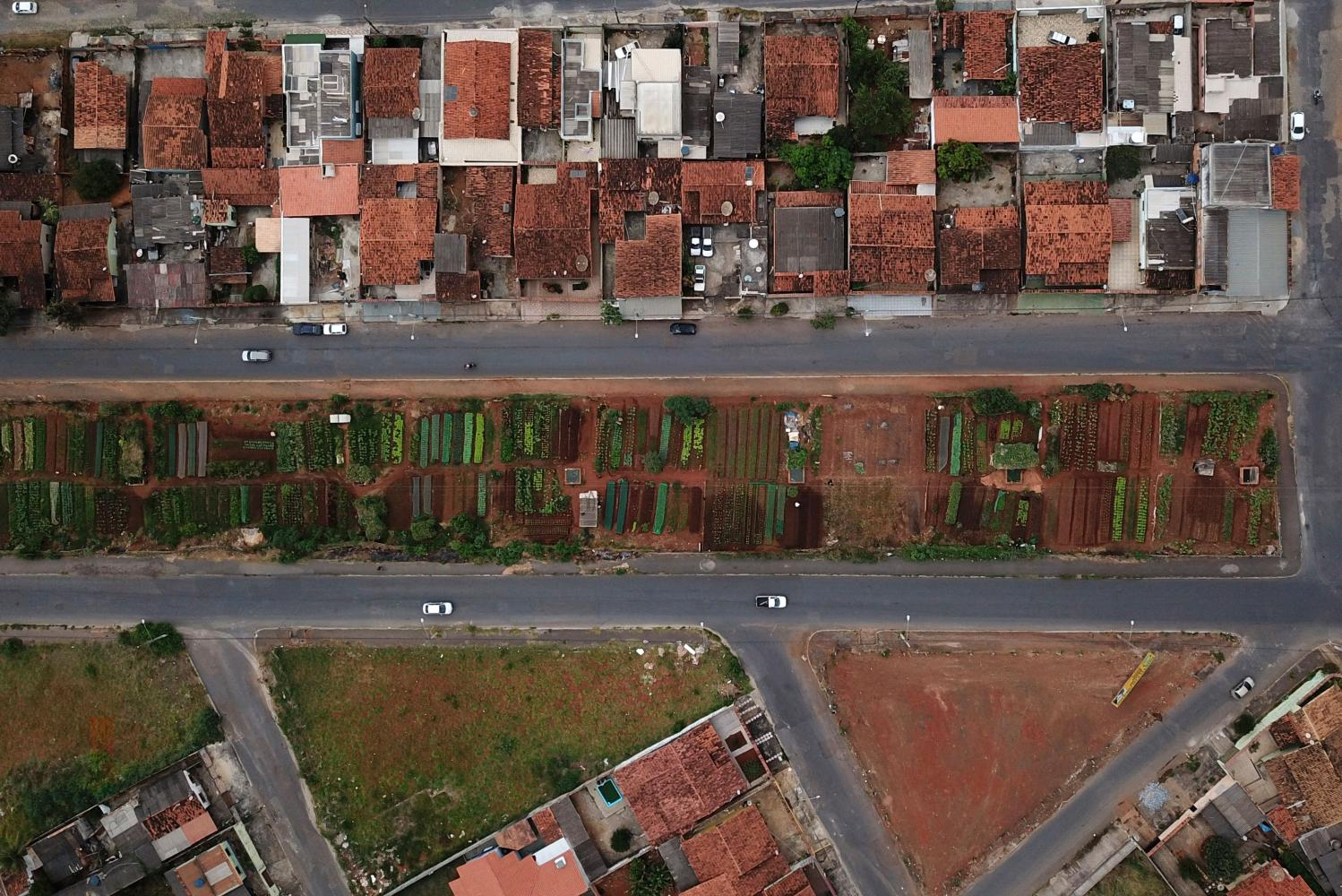 A view of urban community gardens, a source of income for families struggling with their basic living needs amid Covid-19, in Sete Lagoas, Brazil.(AFP photo)
