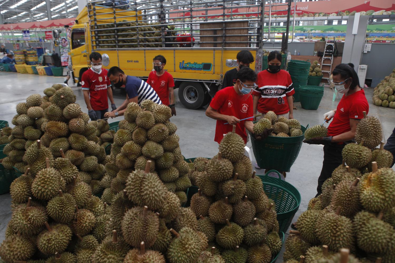 Traders on Wednesday arrange durians into batches ready for distribution at Simummuang Market in Pathum Thani where 867 people there tested positive for the virus.(Photo: Nutthawat Wicheanbut)