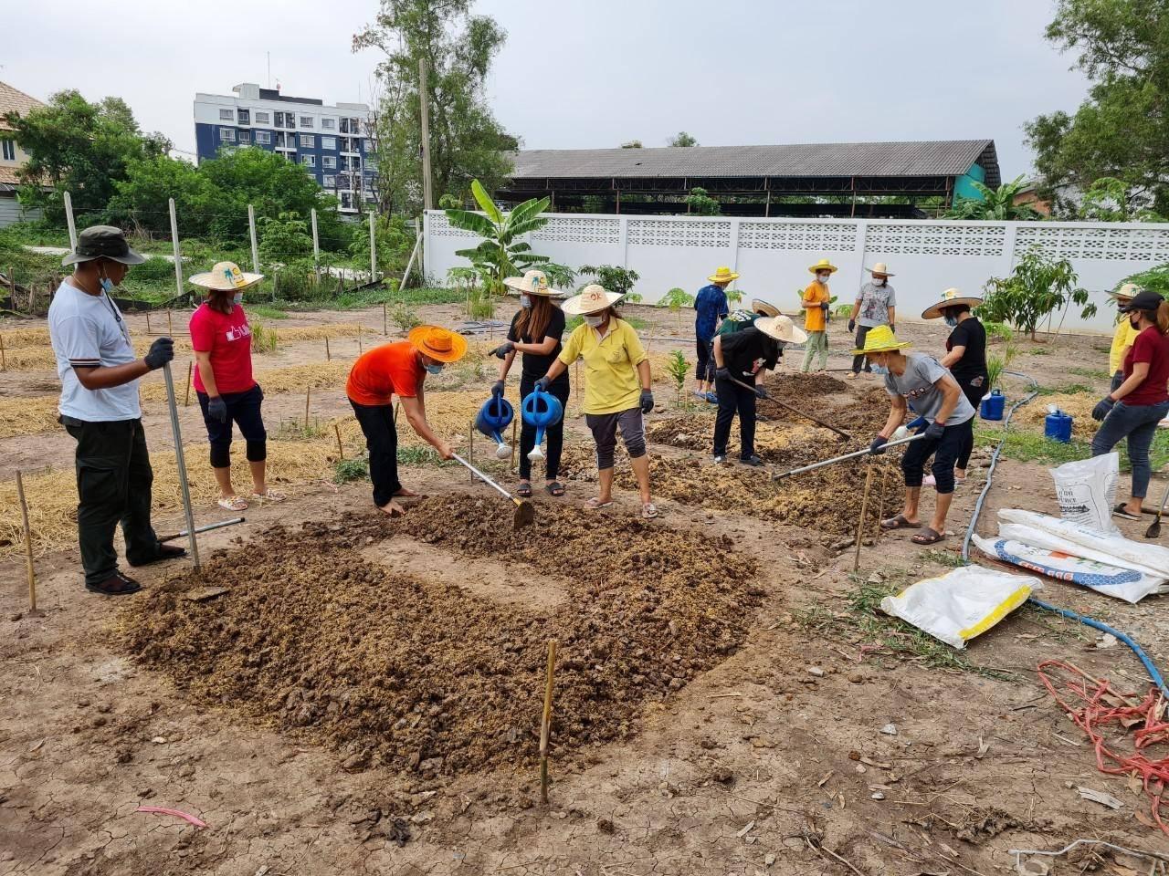 'City farms' help ease Covid impact