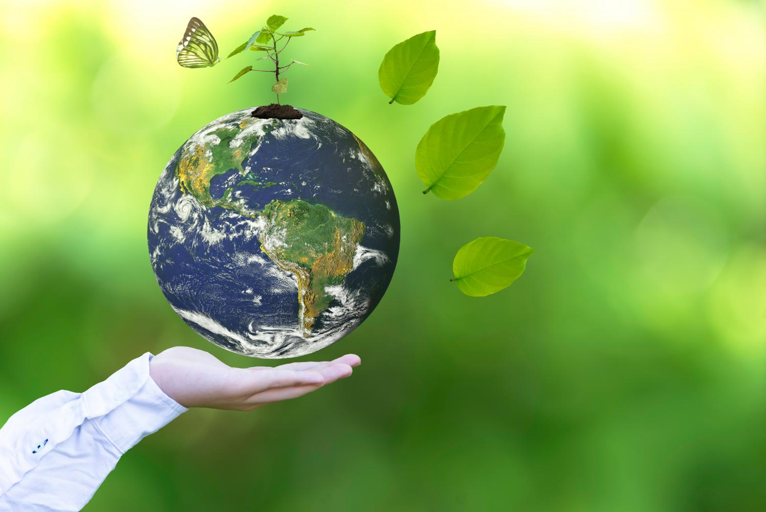 biodiversity dividend