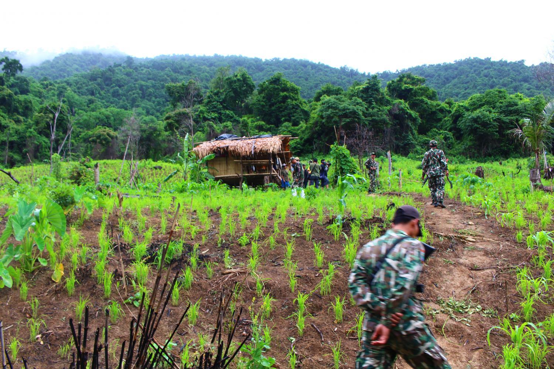Park officers patrol the rice fields of Karen villagers near Bang Kloi Lang, in Kaeng Krachan Forest Complex.Pratch Rujivanarom