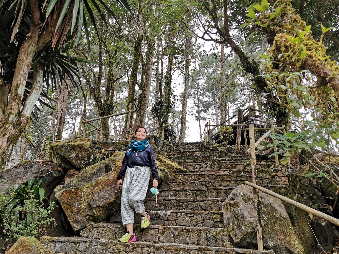 A tourist enjoys the scenic view in Mae Fah Luang Arboretum in Chiang Rai.(Photo: Pongpet Mekloy)